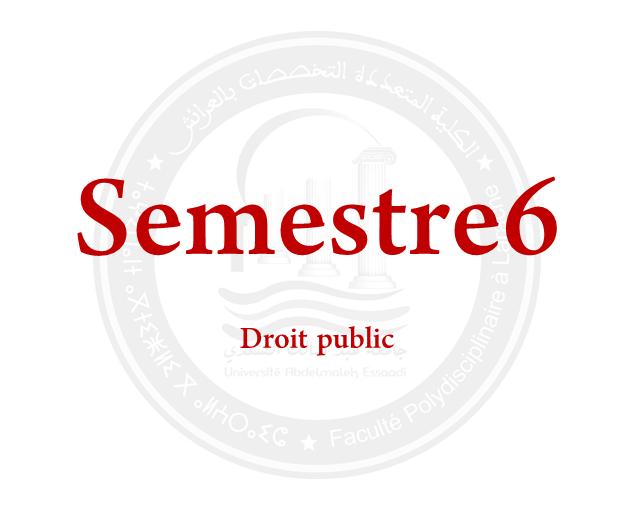 SEMESTRE 6: DROIT PUBLIC